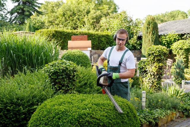 Giardinieri per il Sottoceneri